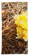Yellow Cactus Flowers Hand Towel
