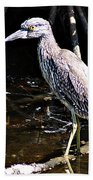 Yellow Crowned Night Heron II Bath Towel
