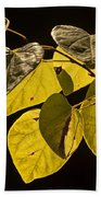 Yellow Leaves On A Tree Branch Bath Towel