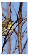 Yellow-rumped Warbler - Placid Bath Towel