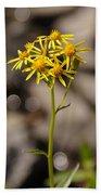 Yellow Wildflower At Crater Lake Bath Towel