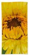 Yellow Zinnia 9494 4286 Bath Towel