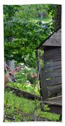 Young Buck At Treehouse Hopatcong Hand Towel