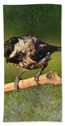Young Chickadee Bath Towel