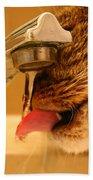 Yummy Water Bath Towel