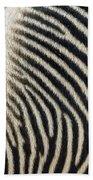 Zebra Caboose Bath Towel