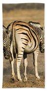 Zebras Three Bath Towel