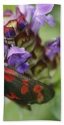 Burnet Moth Bath Towel