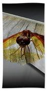 Eastern Amber Dragonfly 3d Bath Towel
