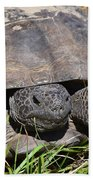 Gopher Tortoise Close Up Bath Towel