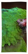 Great Green Macaw Ara Ambiguus Bath Towel