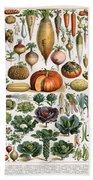 Illustration Of Vegetable Varieties Bath Towel