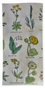 Lithography Of Common Flowers Bath Towel