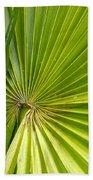 Spiny Fiber Palm Bath Towel