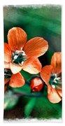 Wildflowers 5 -  Polemonium Reptans  - Digital Paint 3 Bath Towel