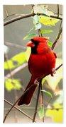 0138 - Cardinal Bath Towel