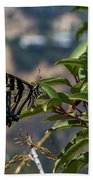 0518- Butterfly Hand Towel
