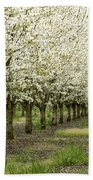 A Flowering Cherry Orchard Bath Towel
