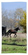 Amish Buggy Late Fall Bath Towel