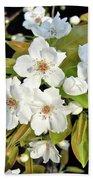 Apple Blossoms 0936 Bath Towel