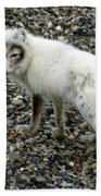 Arctic Fox Bath Towel