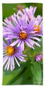 Asters Hand Towel