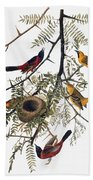 Audubon: Oriole Bath Towel