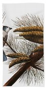 Audubon: Titmouse Bath Towel