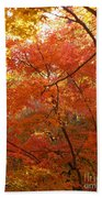 Autumn Gold Hand Towel
