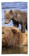 Bear Back Rider Bath Towel