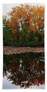 Beautiful Fall ... Hand Towel