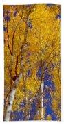 Beautiful Fall Season Nature Renews Itself  Theme Green Trees Reaching For The Sky  Save The Environ Bath Towel