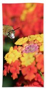Bee, Bumblebee, Flying To A Flower, In Marseille, France Bath Towel