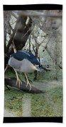 Black Crowned Night Heron Hand Towel