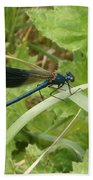 Blue Dragonfly On Leaf Bath Towel