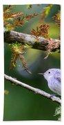 Blue-gray Gnatcatcher In Conifer Bath Towel