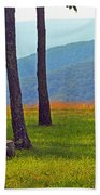 Blue Ridge Mountains - Virginia 2 Bath Towel