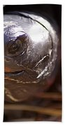 Bog Turtle Bath Towel