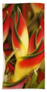 Bunch Of Heliconia Bath Towel