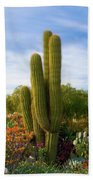 Cactus Monterey California Bath Towel