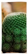 Cactus  Bath Towel