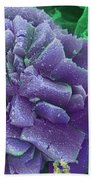 Calcium Oxalate Crystal In Cannabis, Sem Bath Towel
