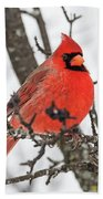 Cardinal Red Bath Towel