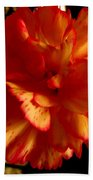 Carnation Hand Towel