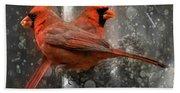 Cary Carolina Cardinals  Bath Towel