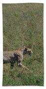 Cheetah On The Serengeti Bath Towel