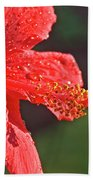 Close Up Of A Red Hibiscus Bath Towel