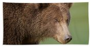 Coastal Brown Bear Bath Towel