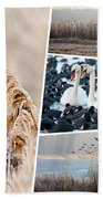 Collage Of Winter Grass Bath Towel