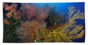 Colorful Assorted Sea Fans And Soft Bath Towel